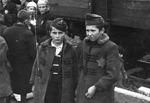 Birkenauban_1944_május